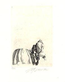 Jaroslav Šerých - Studie mědirytiny Albrechta Dürera