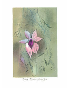 Daniela Benešová - Květ
