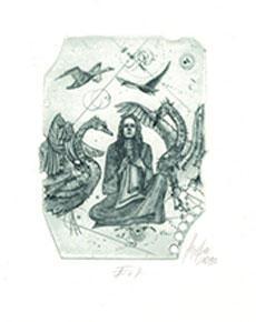 Günter Hujber - Divoké labutě