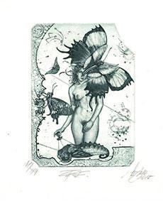 Günter Hujber - Motýlí dívka