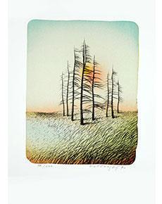Josef Velčovský - Zimní slunce