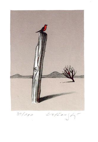Josef Velčovský - Červený ptáček