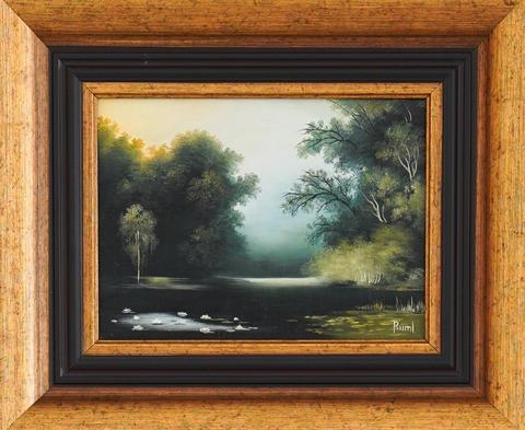 Michael Ruml - Lesní jezero