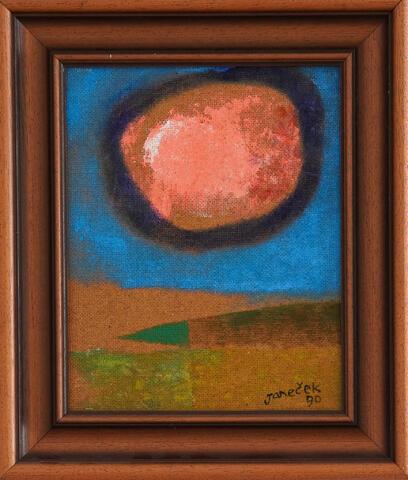 Ota Janeček - Růžový mrak