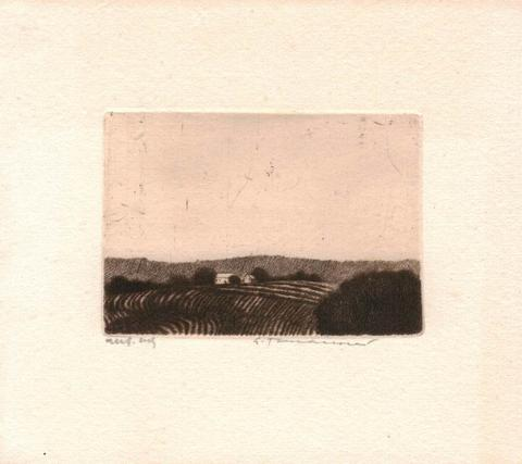 Emílie Tomanová - Krajina I