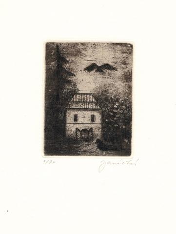Eva Janíčková - Staré domy