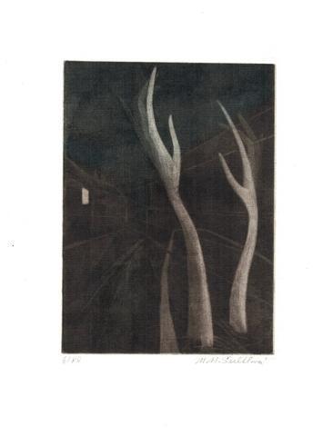 Marie Šechtlová - Stromy