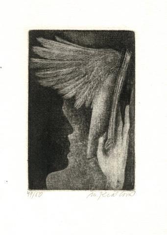 Markéta Králová - Kniha